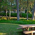 silverthorn-cabins.jpg